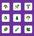 flat icon bio set of foliage wood oaken and vector image vector image