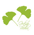 ginkgo biloba leaves green silhouette white vector image vector image