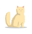 hand drawn fluffy beige cat with pink ears and vector image vector image