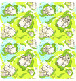 seamless pattern cauliflower vegetables ornament vector image vector image