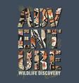 wildlife discovery adventure kids team vector image