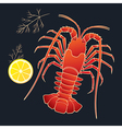 Crayfish with lemon and dill vector image