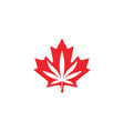 canadian cannabis logo icon for hemp leaf vector image vector image