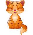 cartoon funny cat vector image