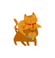 funny cat sitting on the head of a dog cute vector image vector image