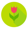 Spring Flower Tulip Circle Icon vector image vector image