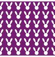 White Rabbit Purple Background vector image vector image