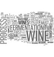 a taste of wine text word cloud concept vector image vector image