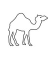 cartoon camel icon vector image vector image