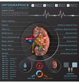 Kidney Medical Infographic Infochart vector image vector image