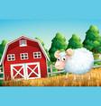 a sheep at farmland vector image vector image