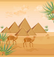 egypt pyramids card background desert view vector image vector image