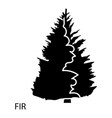 fir icon simple style vector image