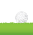Golf Ball in the Grass vector image vector image