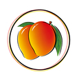 Mango on white background vector image vector image