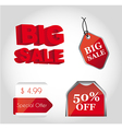 red tags vector image