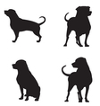 rottweiler silhouettes vector image vector image
