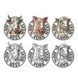 cows pig sheep head 100 percent beef pork lamb vector image vector image