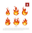 fire on a white background vector image vector image