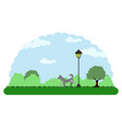landscape of a park with a dog walking vector image