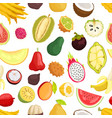 seamless pattern tropical fruits isolated vector image vector image