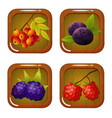 set of berry icons on wooden square vector image
