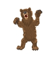 Brown bear stands snarling aggressive vector image