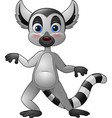 cartoon funny lemur vector image