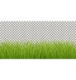 isolated fresh green grass vector image