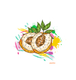 peaches with colorful splashes vector image vector image