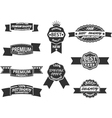 Set of 9 Retro Premium Quality Labels and Badges vector image vector image