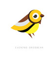 abstract logo of evening grosbeak colorful bird vector image vector image