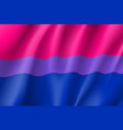 bisexual canvas movement lgbt vector image vector image