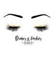 brows and lashes studio vector image vector image