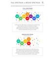 full spectrum vs broad spectrum vertical business vector image vector image