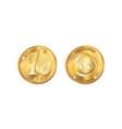 golden coin one pig nose heads and tails for vector image vector image