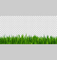 green grass border isolated on transparent vector image vector image