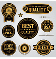 Quality and Satisfaction Badges and Labels Set vector image vector image
