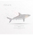 shark digitally drawn low poly triangle wire vector image