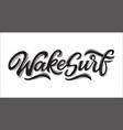 wakesurf lettering logo in graffiti style vector image vector image