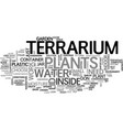 a terriarium as an indoor garden text word cloud vector image vector image