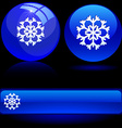 Beautiful snowflake vector image