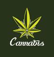 creative cannabis logo symbol icon vector image