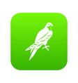 falcon icon digital green vector image