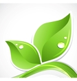 Green leaf with water droplets vector image vector image