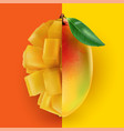 half a whole mango combined with a half diced vector image