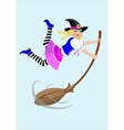 Halloween witch with a broom vector image vector image