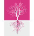 Magic bare tree with roots vector image vector image