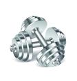 Metal realistic dumbbells vector image vector image
