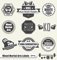 Mixed martial arts labels and icons vector | Price: 1 Credit (USD $1)